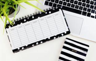 Mini Site de Alta Conversão – Como criar essa estrutura para Ganhar Dinheiro Online